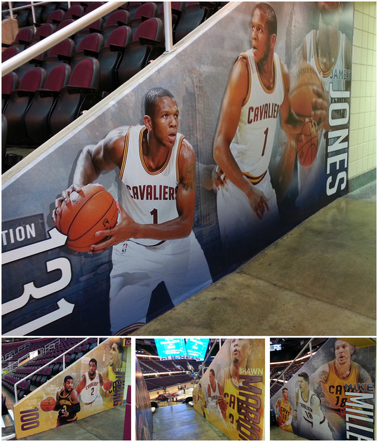 Arena Graphics
